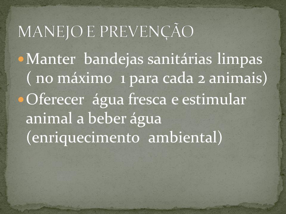 Manter bandejas sanitárias limpas ( no máximo 1 para cada 2 animais) Oferecer água fresca e estimular animal a beber água (enriquecimento ambiental)