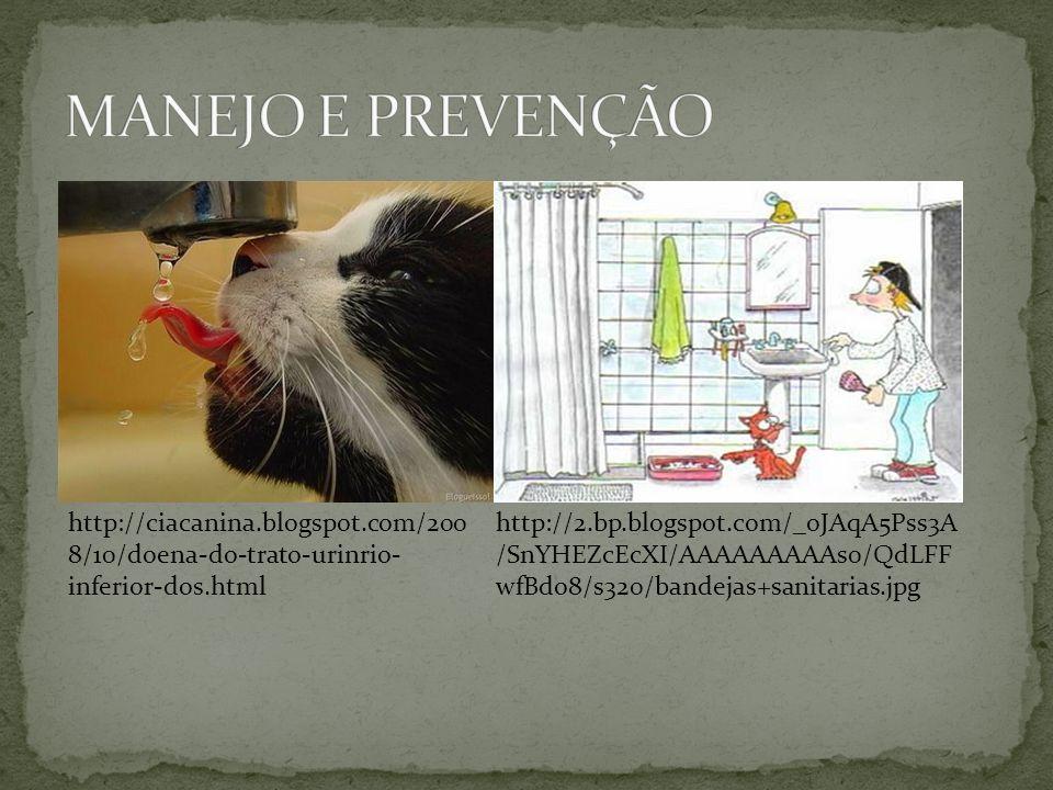 http://ciacanina.blogspot.com/200 8/10/doena-do-trato-urinrio- inferior-dos.html http://2.bp.blogspot.com/_oJAqA5Pss3A /SnYHEZcEcXI/AAAAAAAAAs0/QdLFF