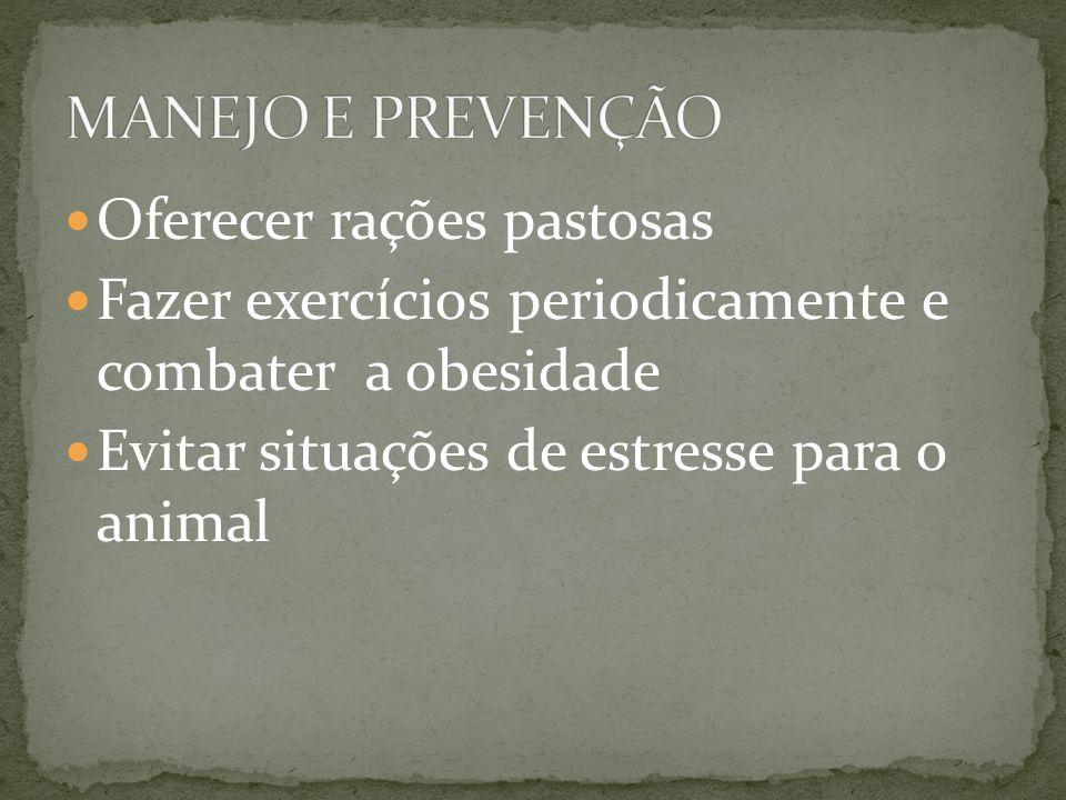 Oferecer rações pastosas Fazer exercícios periodicamente e combater a obesidade Evitar situações de estresse para o animal