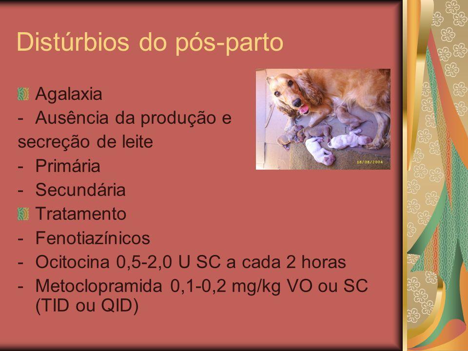 Distúrbios do pós-parto Agalaxia -Ausência da produção e secreção de leite -Primária -Secundária Tratamento -Fenotiazínicos -Ocitocina 0,5-2,0 U SC a