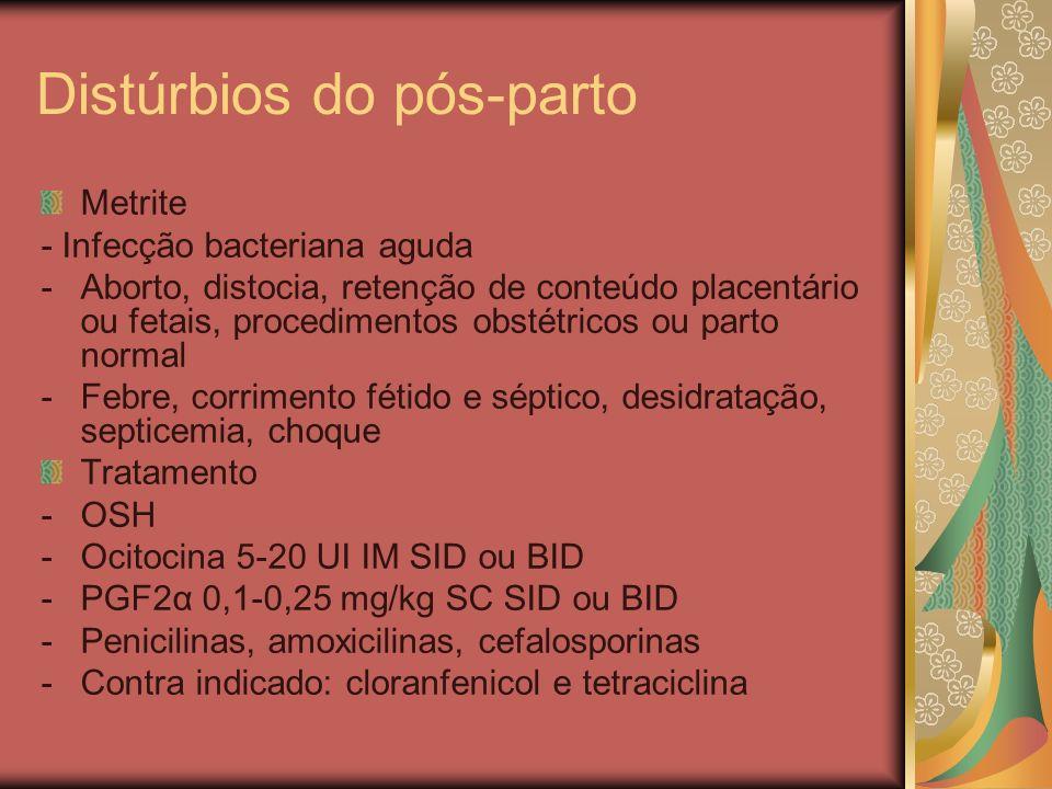 Distúrbios do pós-parto Metrite - Infecção bacteriana aguda -Aborto, distocia, retenção de conteúdo placentário ou fetais, procedimentos obstétricos o