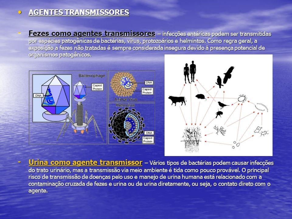 AGENTES TRANSMISSORES AGENTES TRANSMISSORES - Fezes como agentes transmissores – infecções entéricas podem ser transmitidas por espécies patogênicas d
