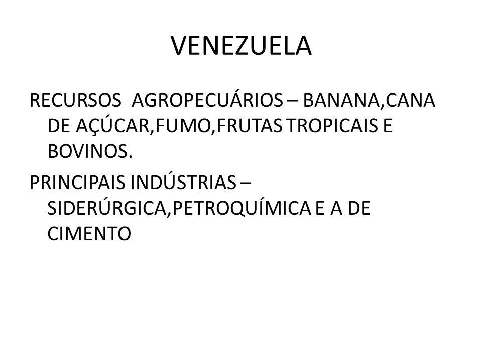 VENEZUELA RECURSOS AGROPECUÁRIOS – BANANA,CANA DE AÇÚCAR,FUMO,FRUTAS TROPICAIS E BOVINOS. PRINCIPAIS INDÚSTRIAS – SIDERÚRGICA,PETROQUÍMICA E A DE CIME