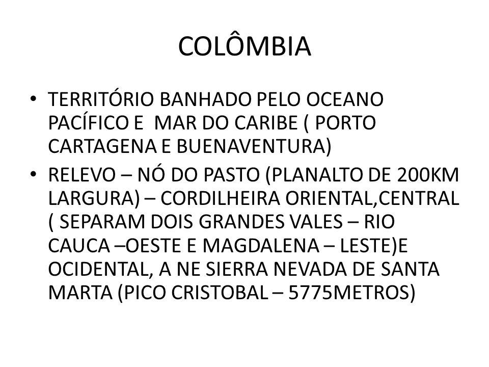 TERRITÓRIO BANHADO PELO OCEANO PACÍFICO E MAR DO CARIBE ( PORTO CARTAGENA E BUENAVENTURA) RELEVO – NÓ DO PASTO (PLANALTO DE 200KM LARGURA) – CORDILHEI
