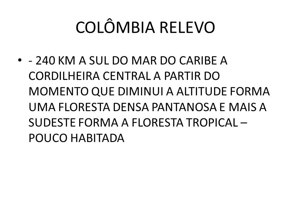 COLÔMBIA RELEVO - 240 KM A SUL DO MAR DO CARIBE A CORDILHEIRA CENTRAL A PARTIR DO MOMENTO QUE DIMINUI A ALTITUDE FORMA UMA FLORESTA DENSA PANTANOSA E