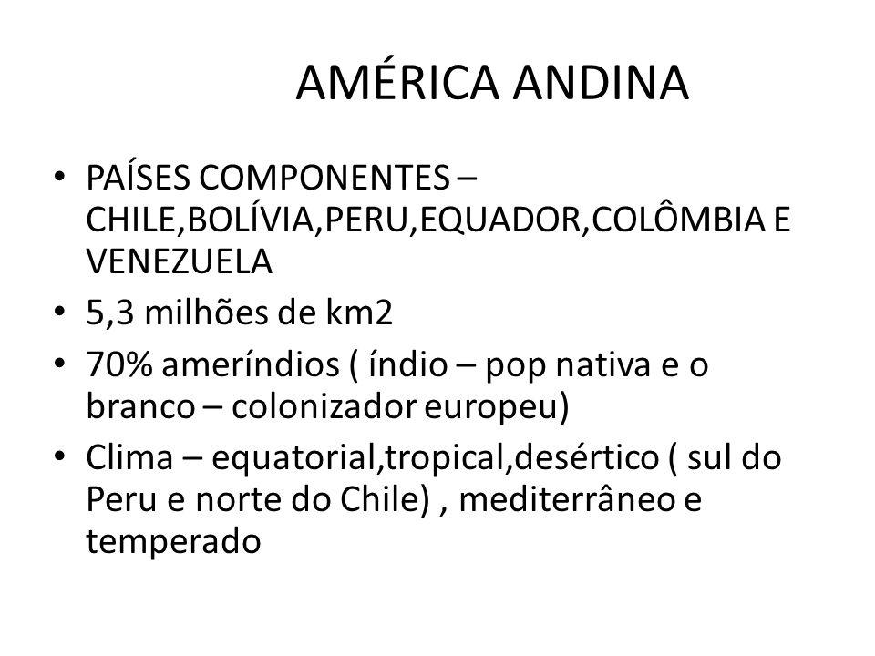 PAÍSES COMPONENTES – CHILE,BOLÍVIA,PERU,EQUADOR,COLÔMBIA E VENEZUELA 5,3 milhões de km2 70% ameríndios ( índio – pop nativa e o branco – colonizador e
