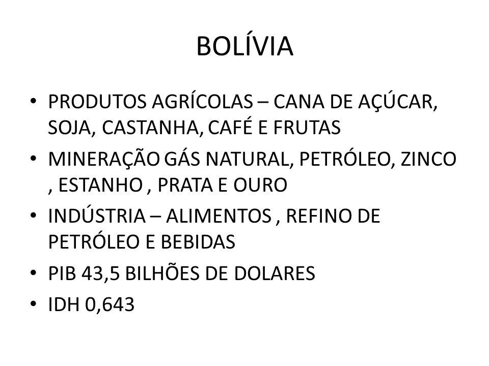 BOLÍVIA PRODUTOS AGRÍCOLAS – CANA DE AÇÚCAR, SOJA, CASTANHA, CAFÉ E FRUTAS MINERAÇÃO GÁS NATURAL, PETRÓLEO, ZINCO, ESTANHO, PRATA E OURO INDÚSTRIA – A