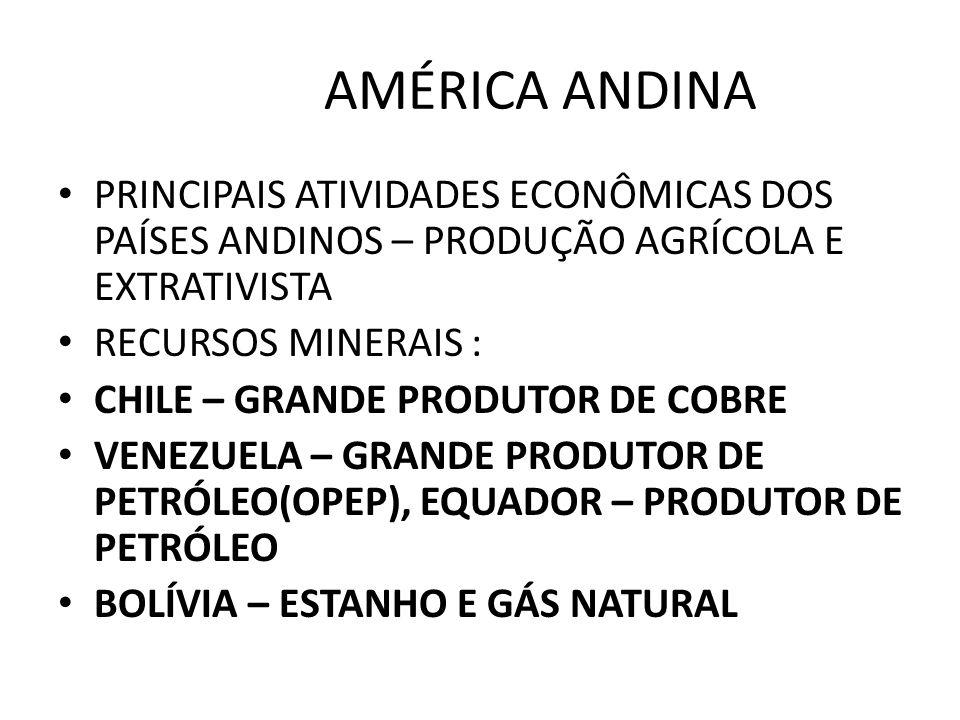 AMÉRICA ANDINA PRINCIPAIS ATIVIDADES ECONÔMICAS DOS PAÍSES ANDINOS – PRODUÇÃO AGRÍCOLA E EXTRATIVISTA RECURSOS MINERAIS : CHILE – GRANDE PRODUTOR DE C