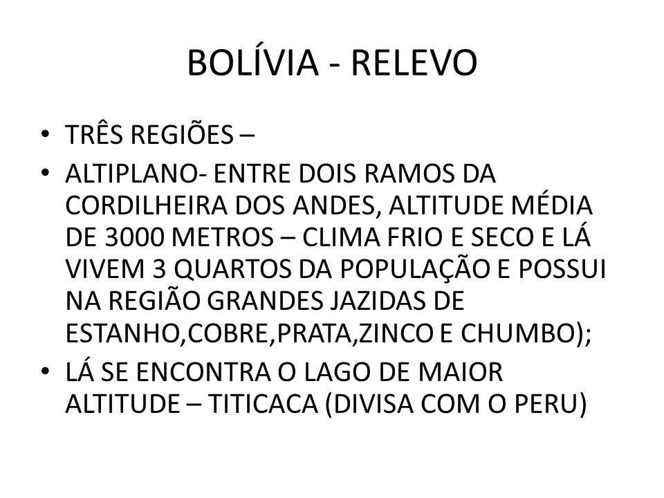 BOLÍVIA - RELEVO TRÊS REGIÕES – ALTIPLANO- ENTRE DOIS RAMOS DA CORDILHEIRA DOS ANDES, ALTITUDE MÉDIA DE 3000 METROS – CLIMA FRIO E SECO E LÁ VIVEM 3 Q