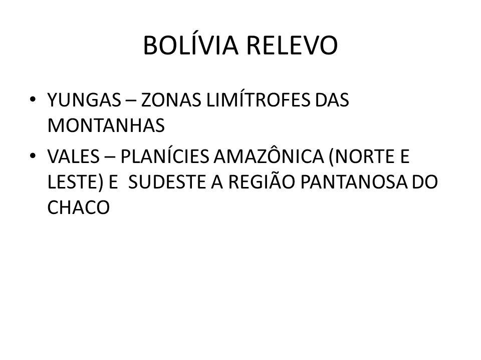BOLÍVIA RELEVO YUNGAS – ZONAS LIMÍTROFES DAS MONTANHAS VALES – PLANÍCIES AMAZÔNICA (NORTE E LESTE) E SUDESTE A REGIÃO PANTANOSA DO CHACO
