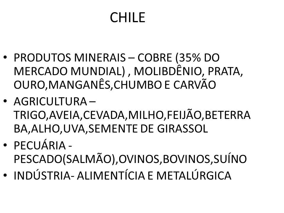CHILE PRODUTOS MINERAIS – COBRE (35% DO MERCADO MUNDIAL), MOLIBDÊNIO, PRATA, OURO,MANGANÊS,CHUMBO E CARVÃO AGRICULTURA – TRIGO,AVEIA,CEVADA,MILHO,FEIJ