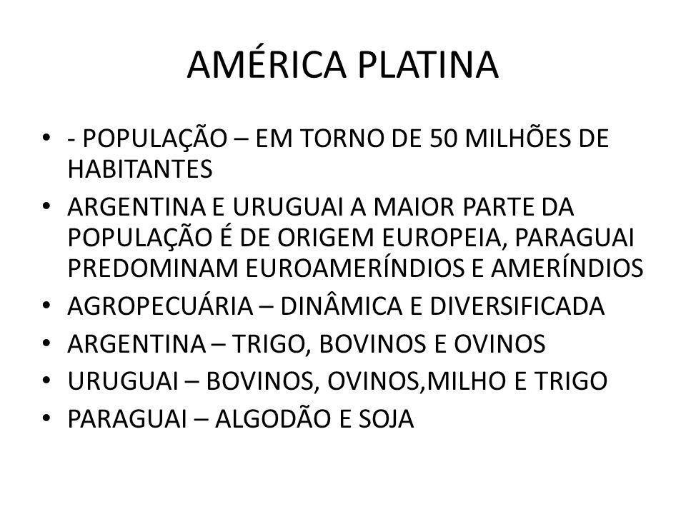 AMÉRICA PLATINA - POPULAÇÃO – EM TORNO DE 50 MILHÕES DE HABITANTES ARGENTINA E URUGUAI A MAIOR PARTE DA POPULAÇÃO É DE ORIGEM EUROPEIA, PARAGUAI PREDO