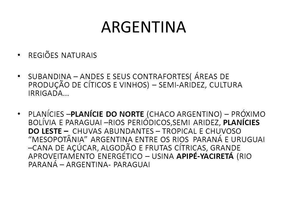 ARGENTINA REGIÕES NATURAIS SUBANDINA – ANDES E SEUS CONTRAFORTES( ÁREAS DE PRODUÇÃO DE CÍTICOS E VINHOS) – SEMI-ARIDEZ, CULTURA IRRIGADA... PLANÍCIES