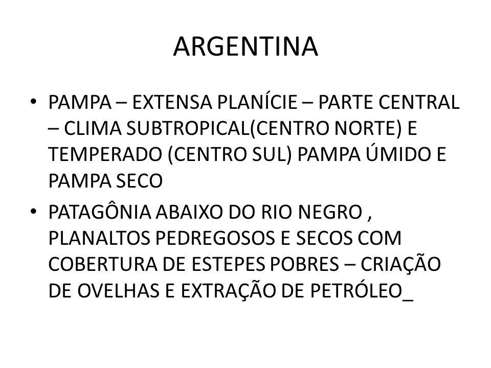 ARGENTINA PAMPA – EXTENSA PLANÍCIE – PARTE CENTRAL – CLIMA SUBTROPICAL(CENTRO NORTE) E TEMPERADO (CENTRO SUL) PAMPA ÚMIDO E PAMPA SECO PATAGÔNIA ABAIX