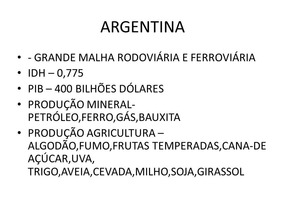 ARGENTINA - GRANDE MALHA RODOVIÁRIA E FERROVIÁRIA IDH – 0,775 PIB – 400 BILHÕES DÓLARES PRODUÇÃO MINERAL- PETRÓLEO,FERRO,GÁS,BAUXITA PRODUÇÃO AGRICULT
