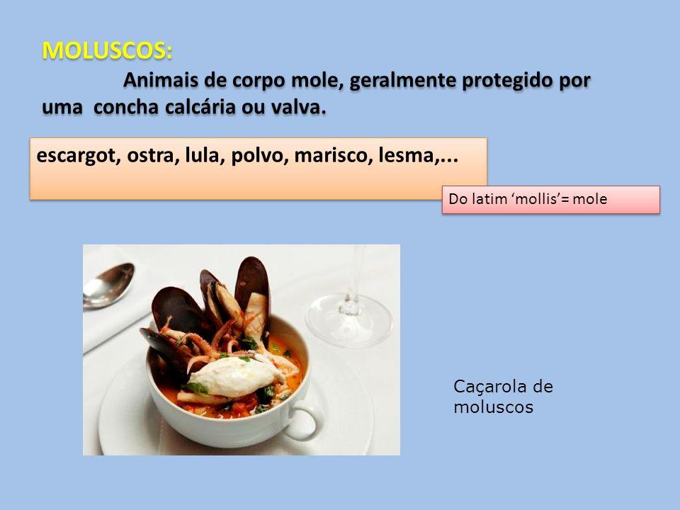 MOLUSCOS: Animais de corpo mole, geralmente protegido por uma concha calcária ou valva. MOLUSCOS: Animais de corpo mole, geralmente protegido por uma