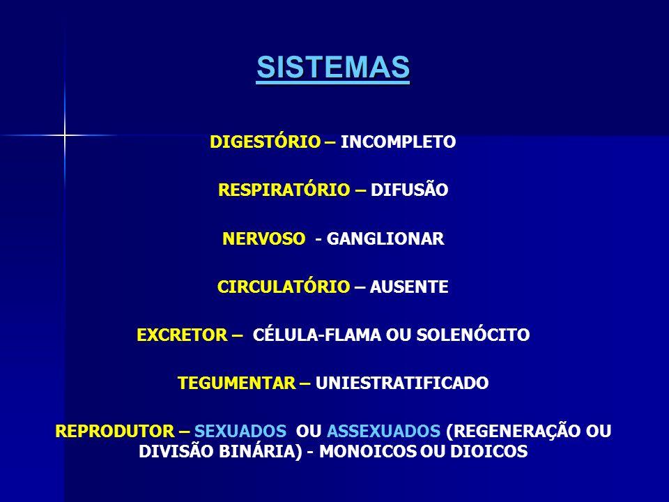 SISTEMAS DIGESTÓRIO – INCOMPLETO RESPIRATÓRIO – DIFUSÃO NERVOSO - GANGLIONAR CIRCULATÓRIO – AUSENTE EXCRETOR – CÉLULA-FLAMA OU SOLENÓCITO TEGUMENTAR – UNIESTRATIFICADO REPRODUTOR – SEXUADOS OU ASSEXUADOS (REGENERAÇÃO OU DIVISÃO BINÁRIA) - MONOICOS OU DIOICOS