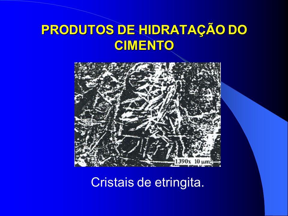 PRODUTOS DE HIDRATAÇÃO DO CIMENTO Cristais de etringita.