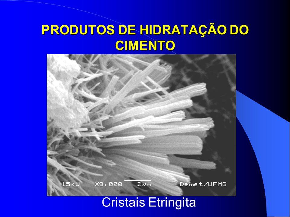 PRODUTOS DE HIDRATAÇÃO DO CIMENTO Cristais Etringita