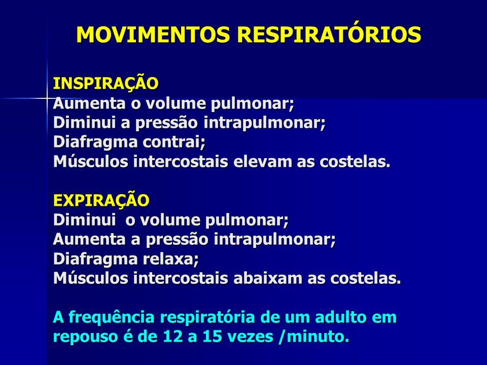 MOVIMENTOS RESPIRATÓRIOS MOVIMENTOS RESPIRATÓRIOSINSPIRAÇÃO Aumenta o volume pulmonar; Diminui a pressão intrapulmonar; Diafragma contrai; Músculos intercostais elevam as costelas.