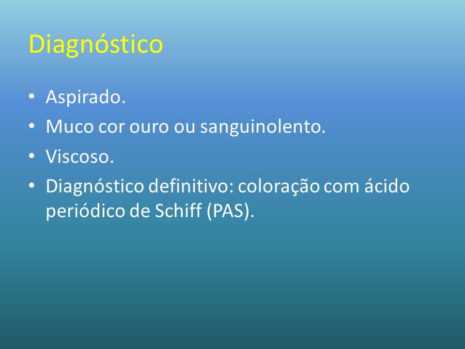 Diagnóstico Aspirado. Muco cor ouro ou sanguinolento. Viscoso. Diagnóstico definitivo: coloração com ácido periódico de Schiff (PAS).