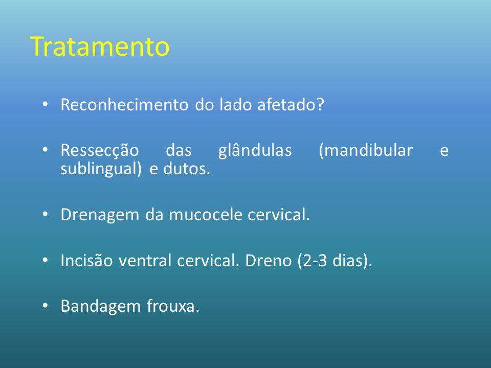 Tratamento Reconhecimento do lado afetado? Ressecção das glândulas (mandibular e sublingual) e dutos. Drenagem da mucocele cervical. Incisão ventral c
