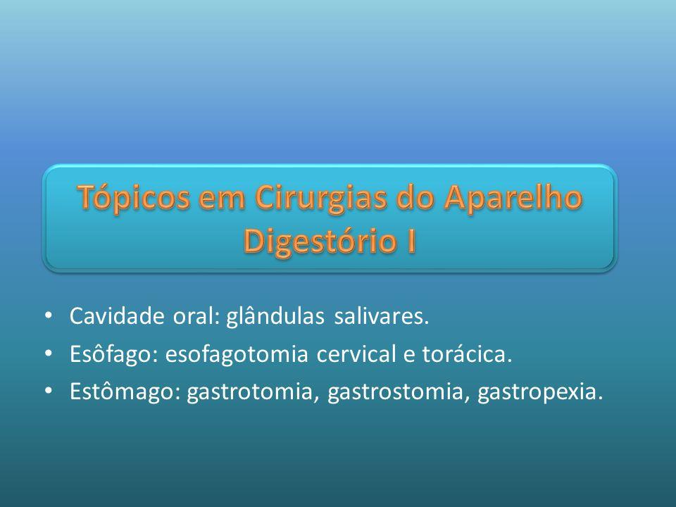 Cavidade oral: glândulas salivares. Esôfago: esofagotomia cervical e torácica. Estômago: gastrotomia, gastrostomia, gastropexia.