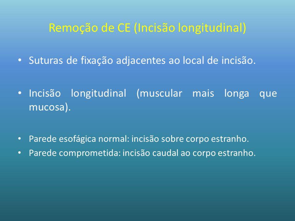 Remoção de CE (Incisão longitudinal) Suturas de fixação adjacentes ao local de incisão. Incisão longitudinal (muscular mais longa que mucosa). Parede