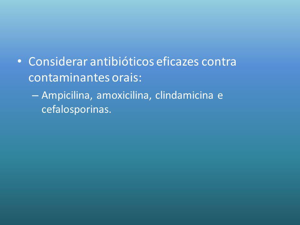 Considerar antibióticos eficazes contra contaminantes orais: – Ampicilina, amoxicilina, clindamicina e cefalosporinas.