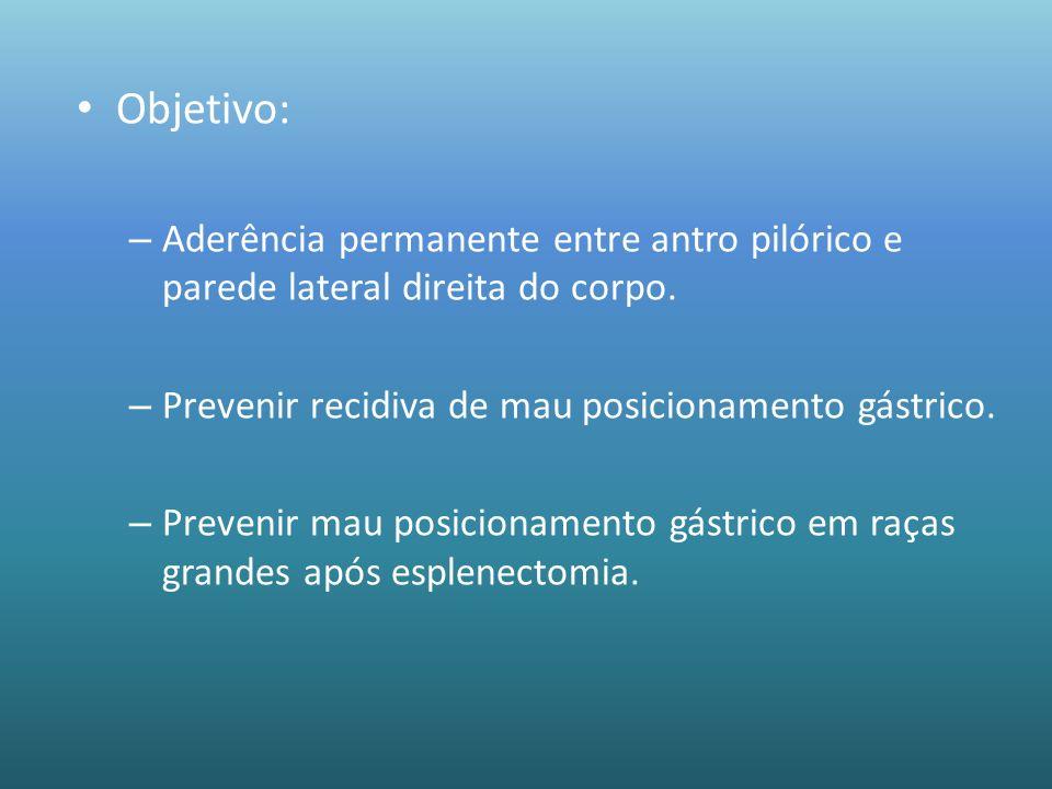 Objetivo: – Aderência permanente entre antro pilórico e parede lateral direita do corpo. – Prevenir recidiva de mau posicionamento gástrico. – Preveni