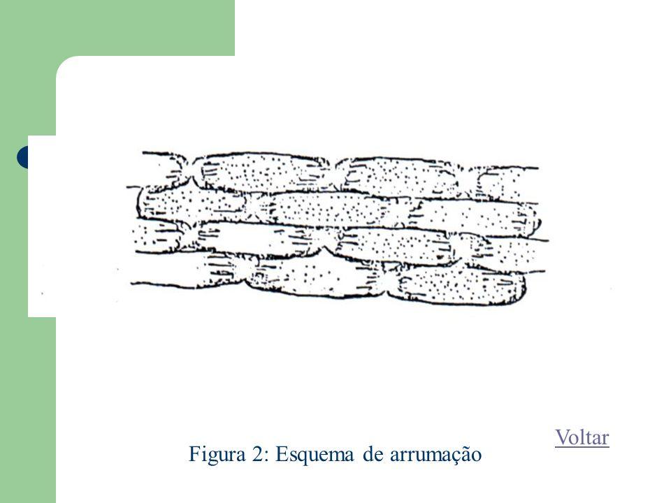 Figura 2: Esquema de arrumação Voltar