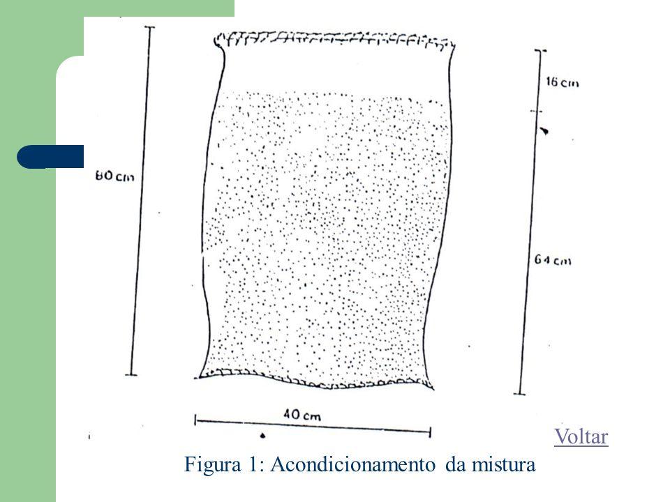 Figura 1: Acondicionamento da mistura Voltar
