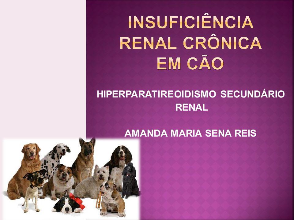 CAUSA DIFÍCIL DE SER DETERMINADA DESCONHECIDA