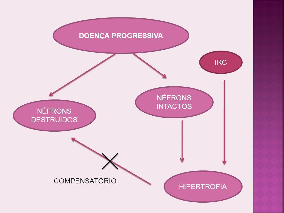 LESÕES RENAIS PROGRESSIVAS IRREVERSÍVEIS IRC TRATAMENTO RARAMENTE MELHORA FUNÇÃO RENAL