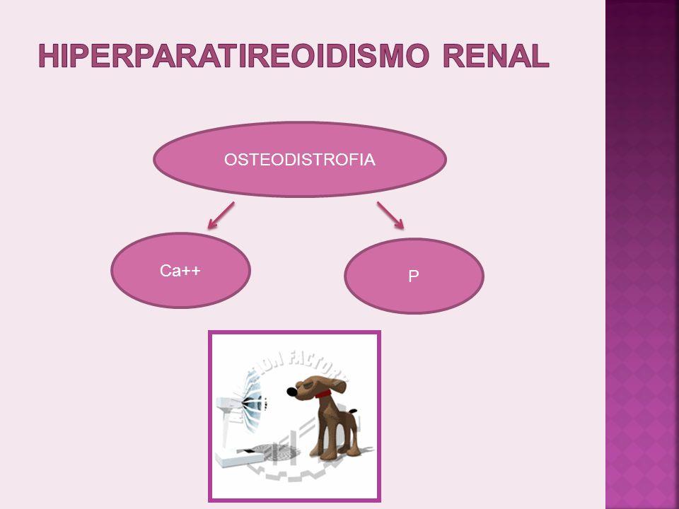 IRC ANOSMESES SEMANAS SC RELATIVAMENTE DISCRETOS MAGNITUDE AZOTEMIA