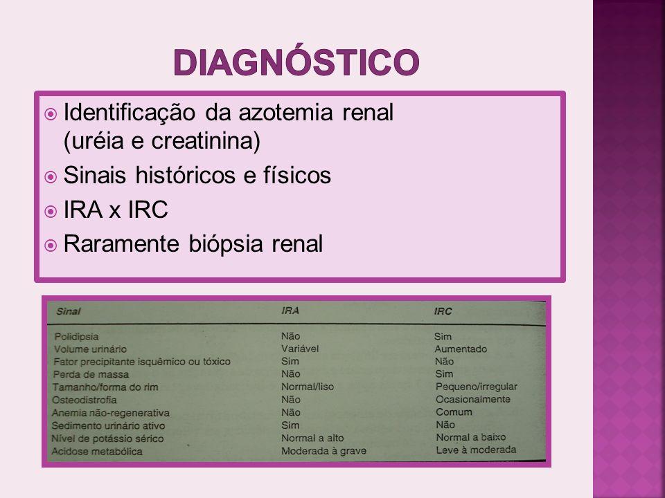 FLUIDOTERAPIA: Desidratação (poliúria) DIETA restrição de proteína (sinais urêmicos) DIETA restrição de fósforo ( Hiperfosfatemia) QUELANTE DO P.