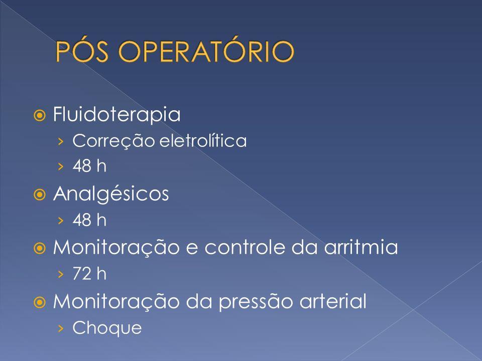 Fluidoterapia Correção eletrolítica 48 h Analgésicos 48 h Monitoração e controle da arritmia 72 h Monitoração da pressão arterial Choque