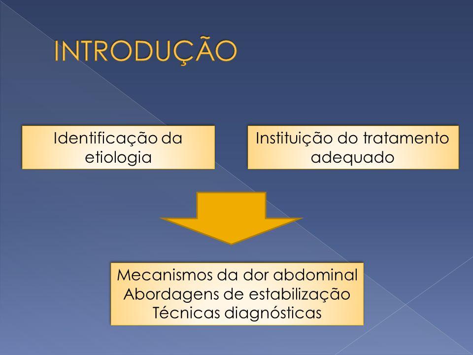 Identificação da etiologia Instituição do tratamento adequado Mecanismos da dor abdominal Abordagens de estabilização Técnicas diagnósticas Mecanismos