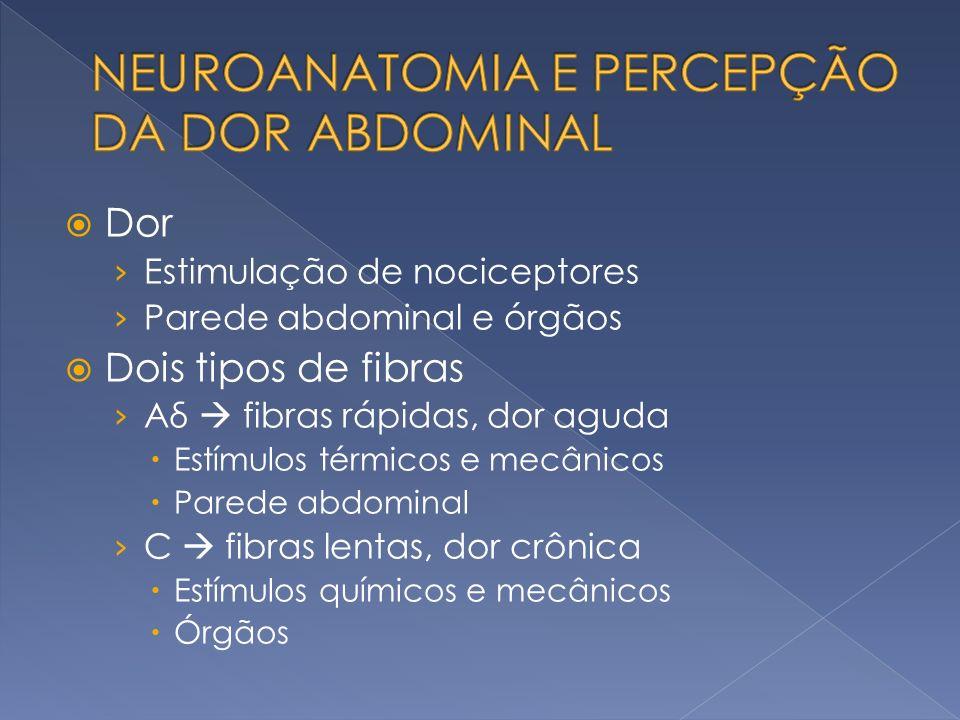 Vários estímulos podem ativar os nociceptores Forças mecânicas Tensão Dilatação Síndrome de dilatação vólvulo gástrico Estímulo químico Mediadores inflamatórios Isquemia – bradicinina e íon K Irritantes químicos Peritonite