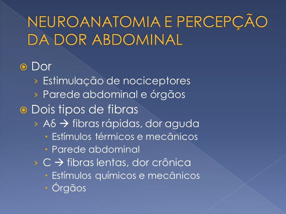 A – corpo do estômago B – antro pilórico C – Piloro