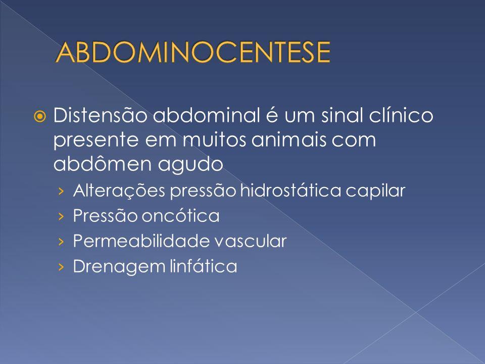 Distensão abdominal é um sinal clínico presente em muitos animais com abdômen agudo Alterações pressão hidrostática capilar Pressão oncótica Permeabil