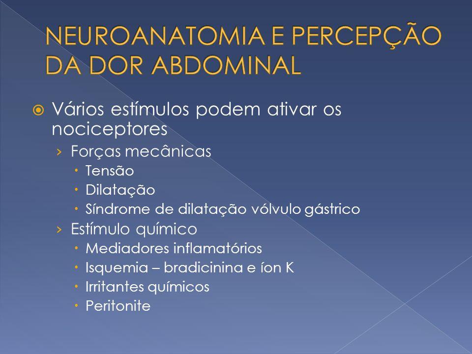 Vários estímulos podem ativar os nociceptores Forças mecânicas Tensão Dilatação Síndrome de dilatação vólvulo gástrico Estímulo químico Mediadores inf