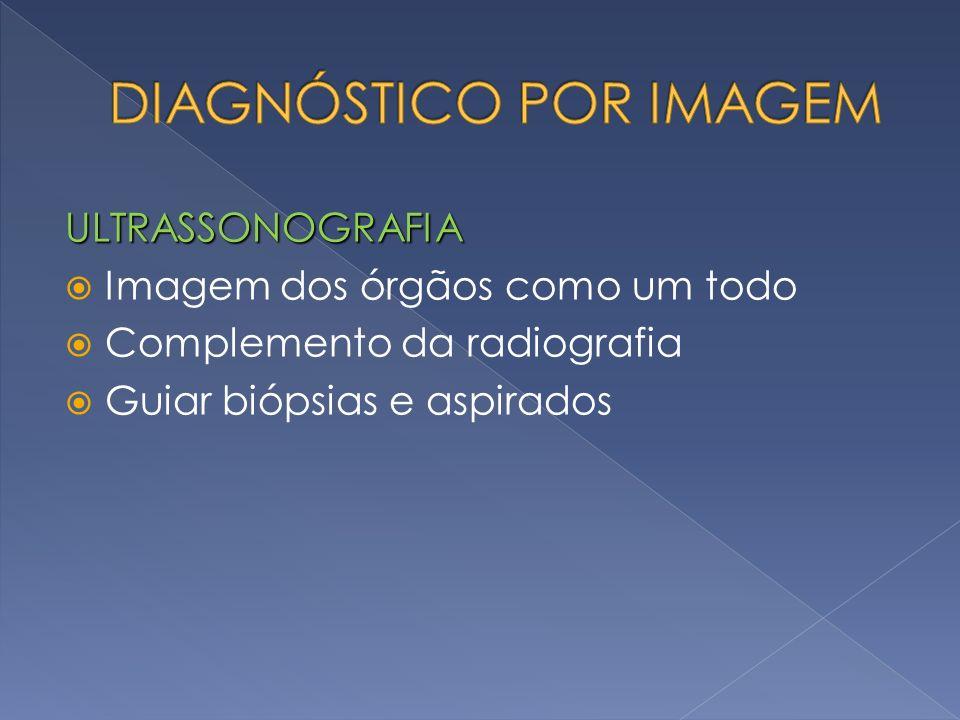ULTRASSONOGRAFIA Imagem dos órgãos como um todo Complemento da radiografia Guiar biópsias e aspirados
