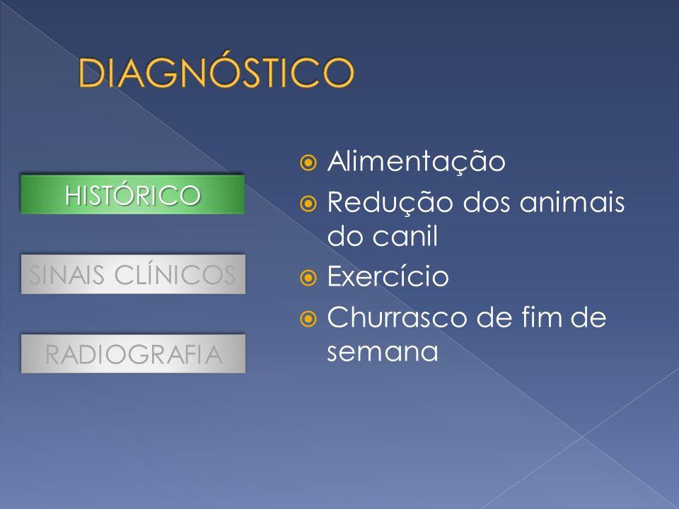 Alimentação Redução dos animais do canil Exercício Churrasco de fim de semana SINAIS CLÍNICOS RADIOGRAFIA HISTÓRICOHISTÓRICO