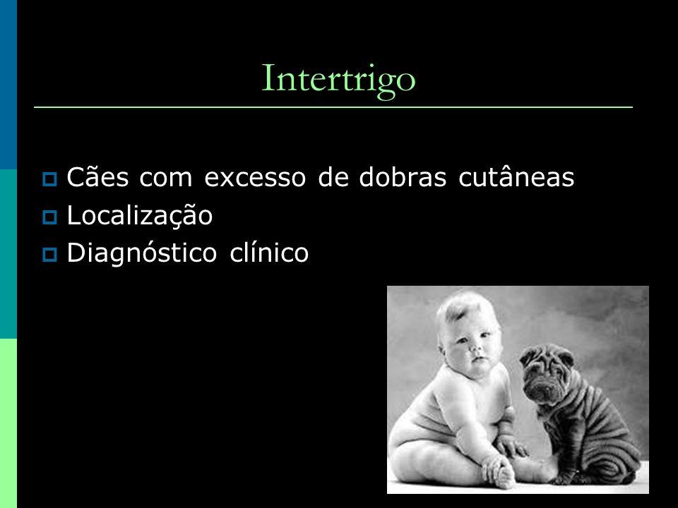 Intertrigo Cães com excesso de dobras cutâneas Localização Diagnóstico clínico