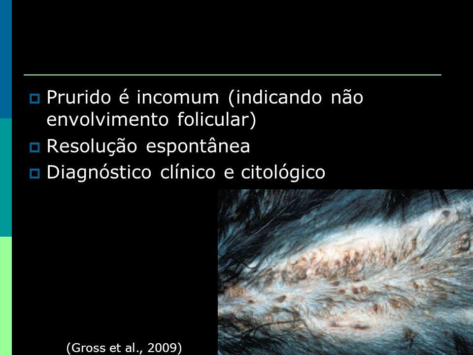 Prurido é incomum (indicando não envolvimento folicular) Resolução espontânea Diagnóstico clínico e citológico (Gross et al., 2009)