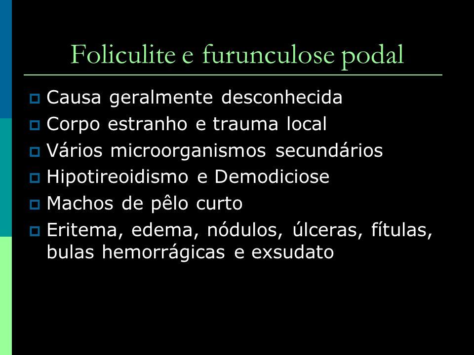 Foliculite e furunculose podal Causa geralmente desconhecida Corpo estranho e trauma local Vários microorganismos secundários Hipotireoidismo e Demodi