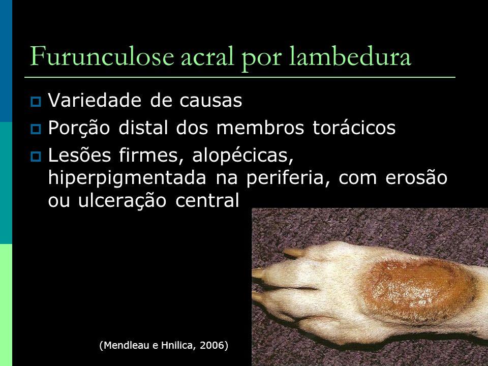 Furunculose acral por lambedura Variedade de causas Porção distal dos membros torácicos Lesões firmes, alopécicas, hiperpigmentada na periferia, com e