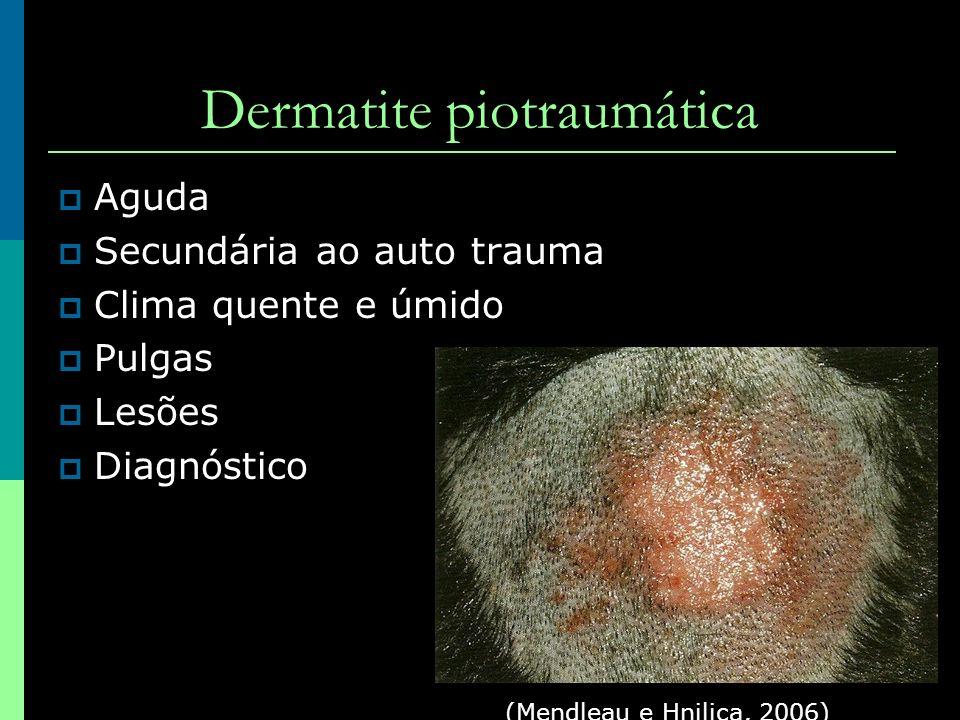 Dermatite piotraumática Aguda Secundária ao auto trauma Clima quente e úmido Pulgas Lesões Diagnóstico (Mendleau e Hnilica, 2006)