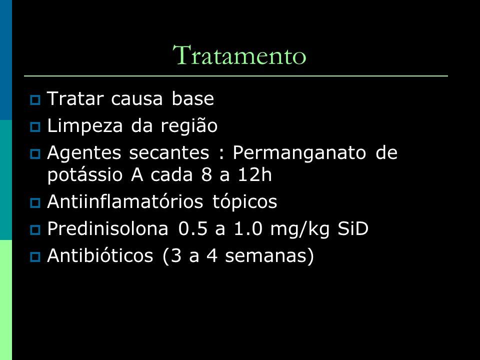 Tratamento Tratar causa base Limpeza da região Agentes secantes : Permanganato de potássio A cada 8 a 12h Antiinflamatórios tópicos Predinisolona 0.5